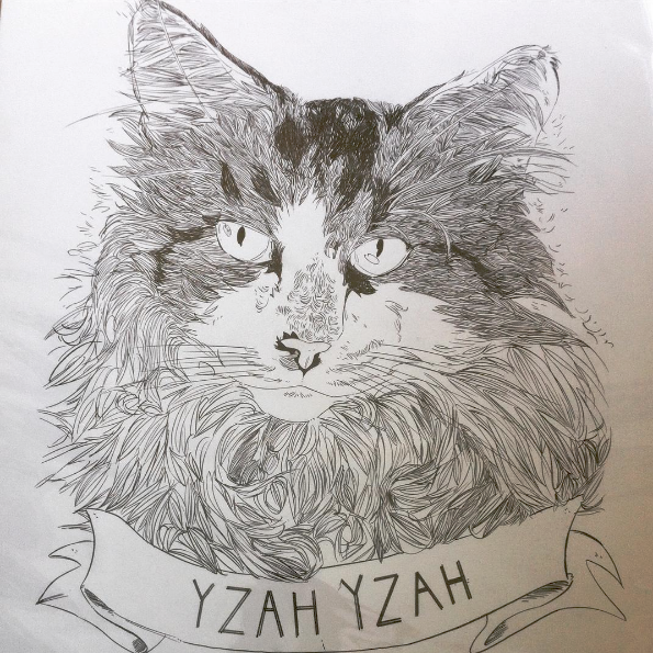 a portrait of my cat by steve, a birthday gift for andy g.