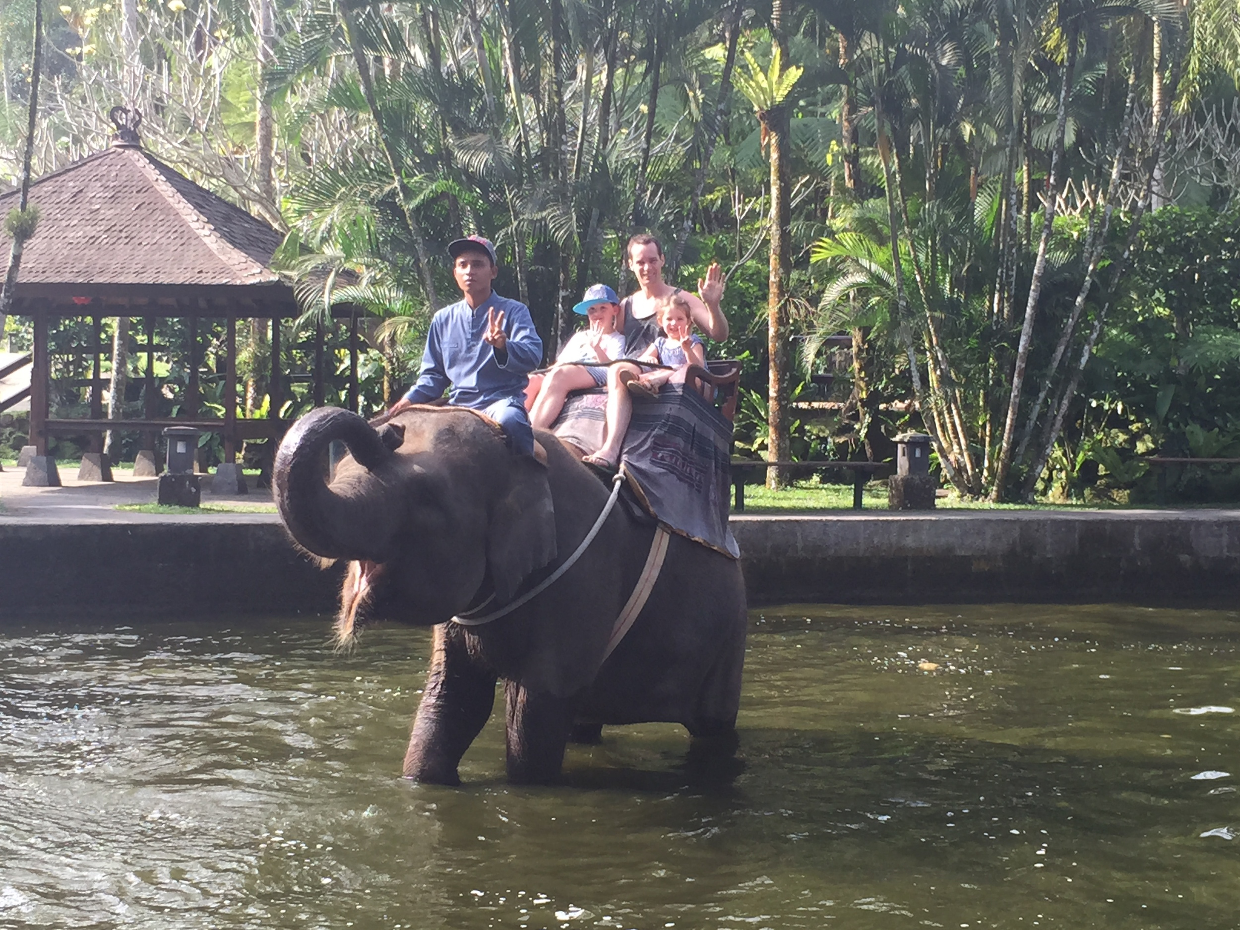 First Elephant Ride