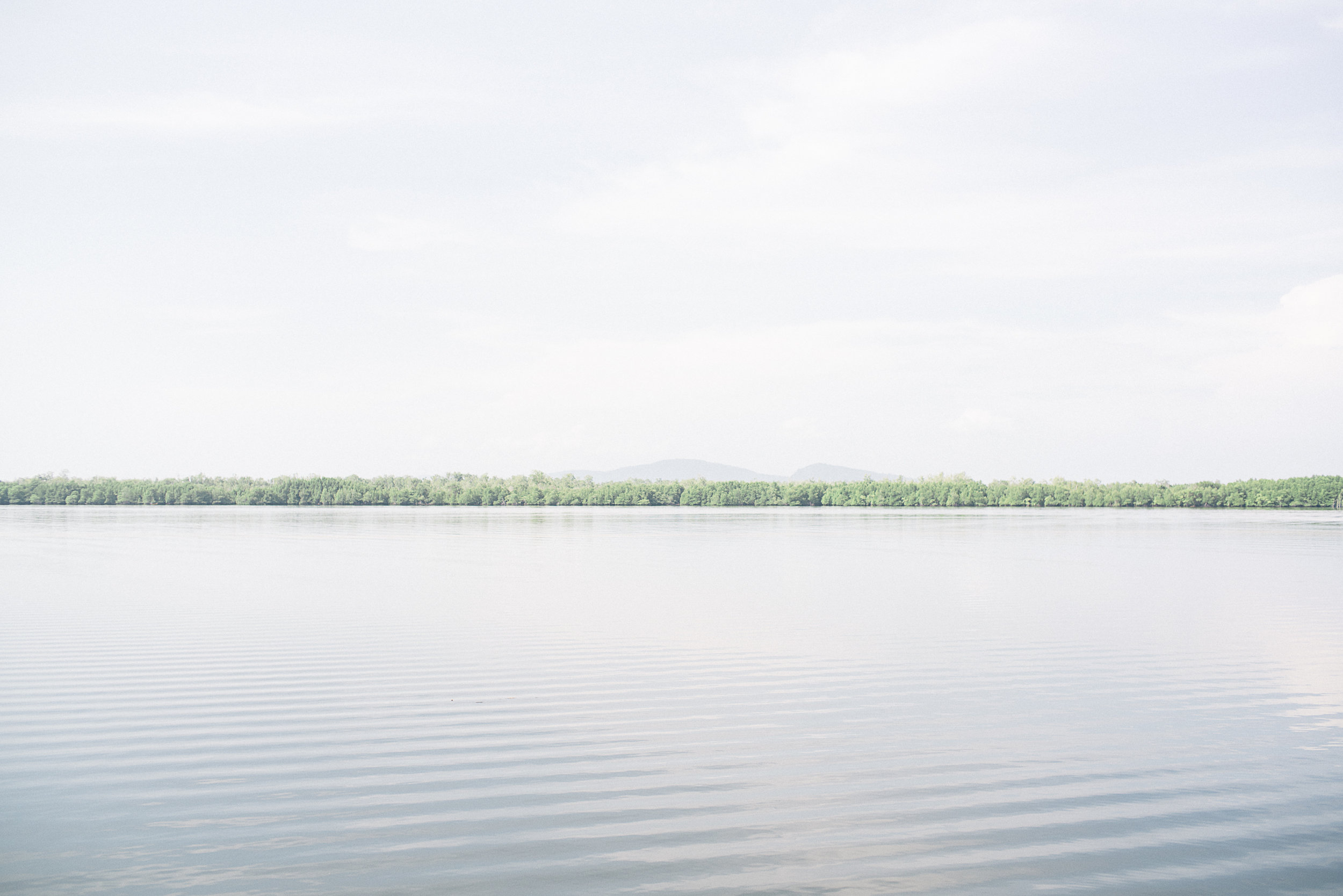 The tributary networks in the Koh Kong province can stretch up to 100m wide and go as shallow to 1m deep.