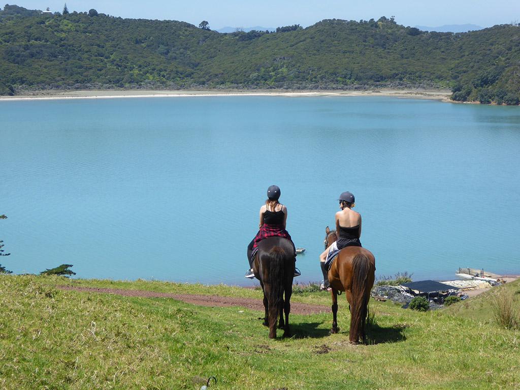 horse treks.jpg