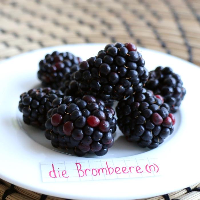 die Brombeere - blackberry