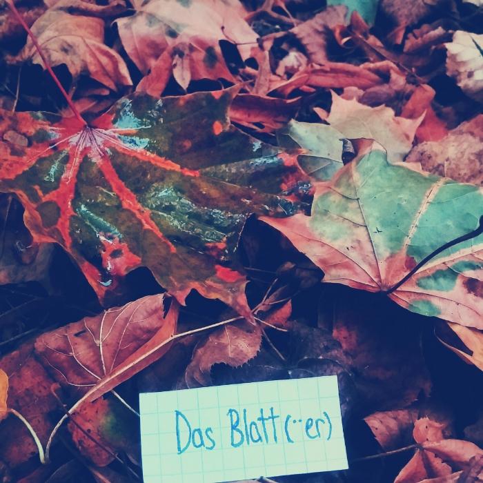 das Blatt - leaves