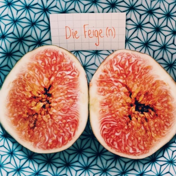 die Feige - fig
