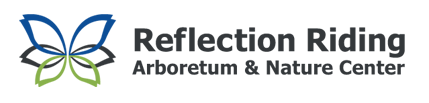 Logo- Reflection.png
