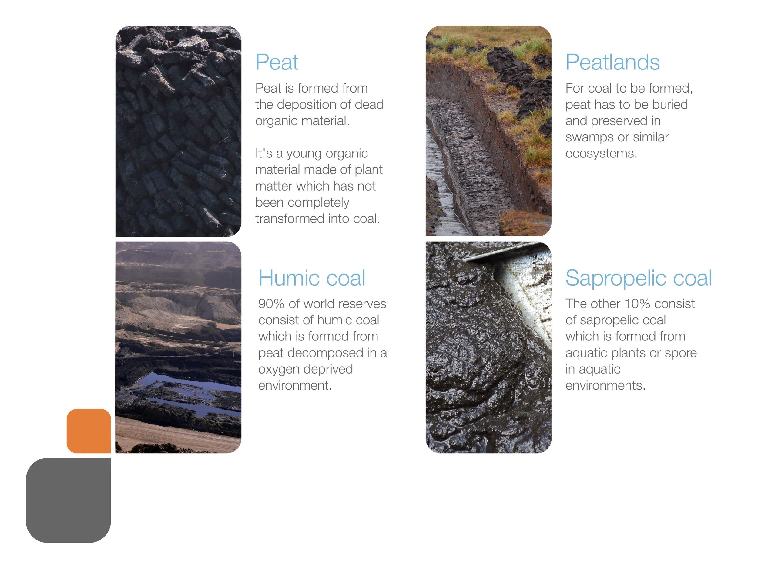coal_presentation 54.jpeg