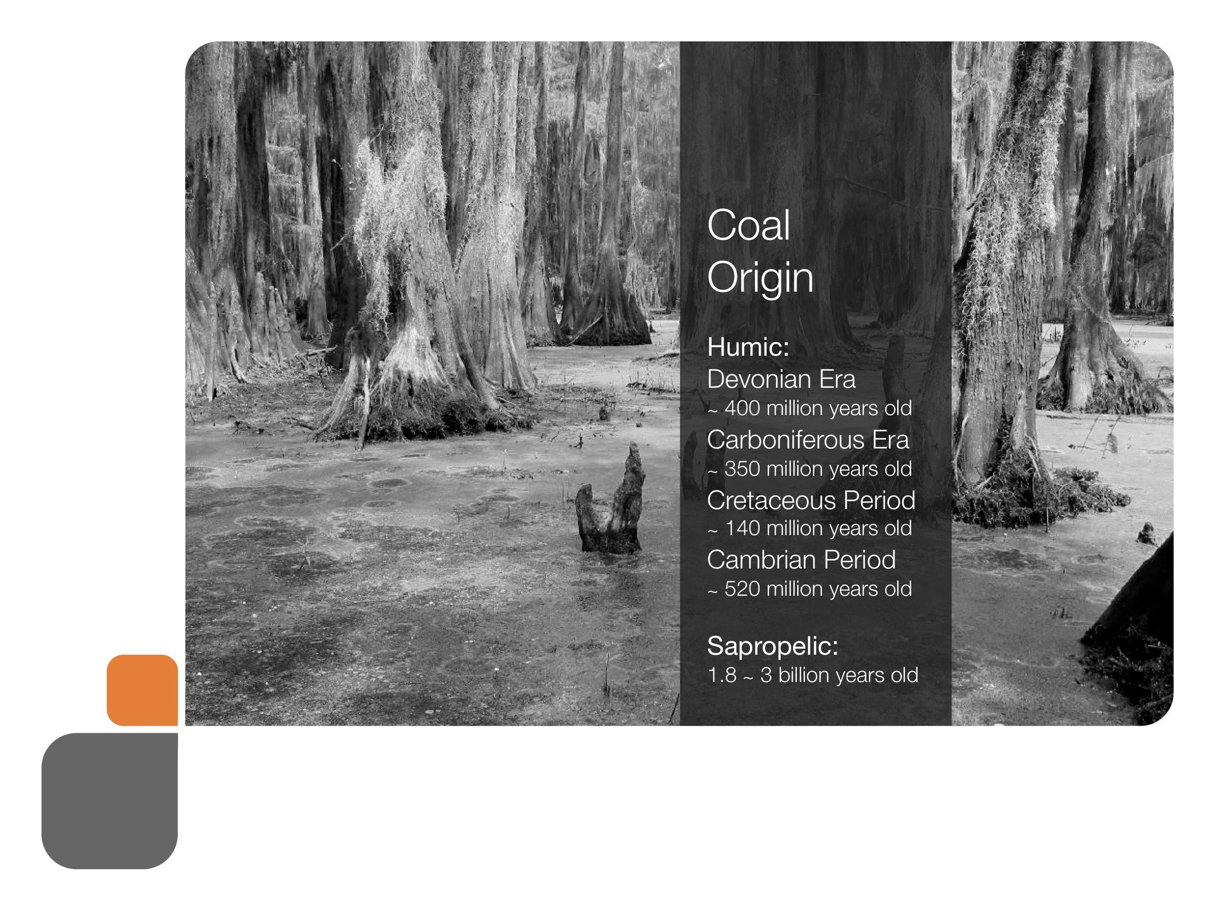 coal_presentation 55.jpeg