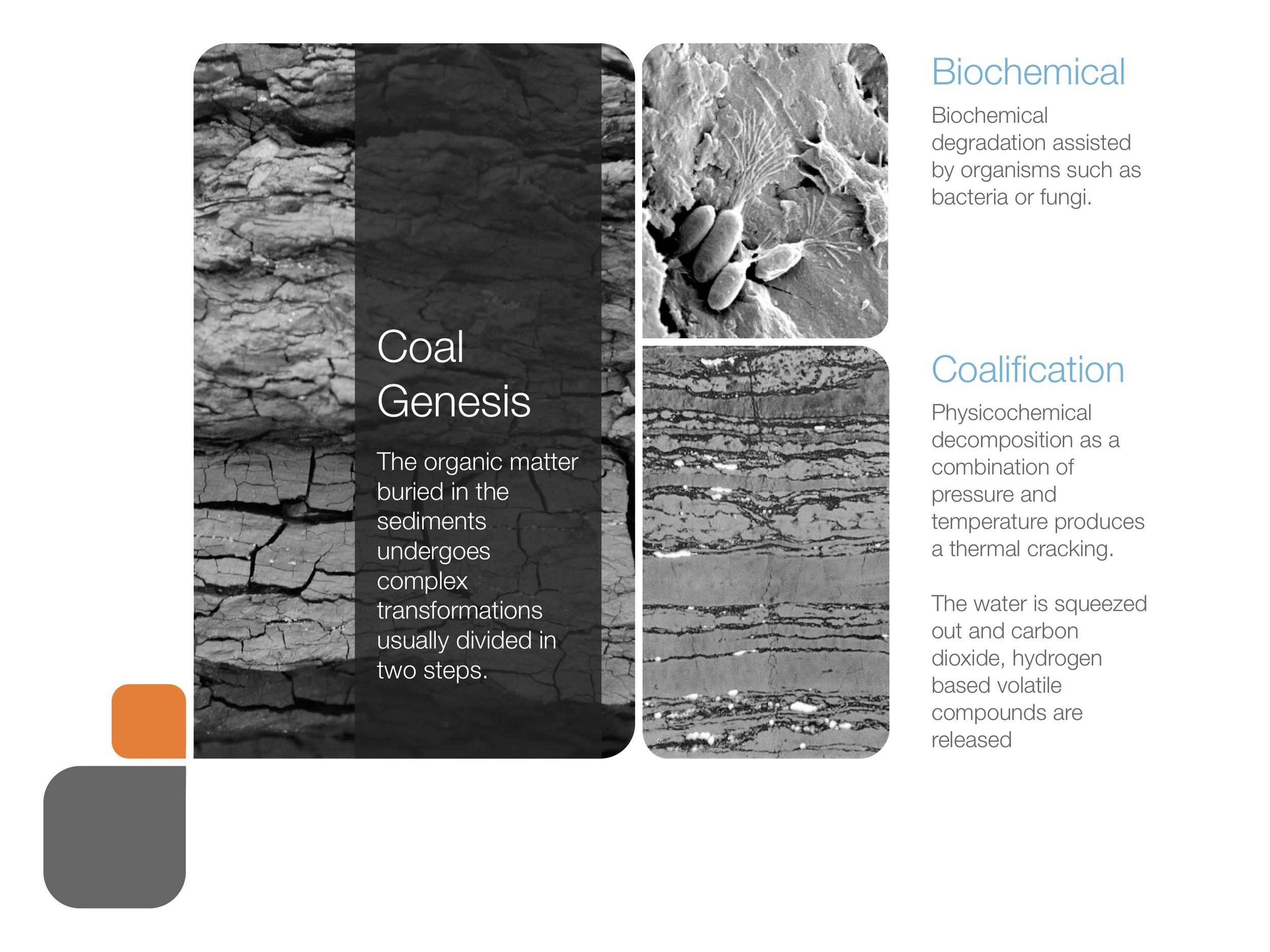 coal_presentation 56.jpeg