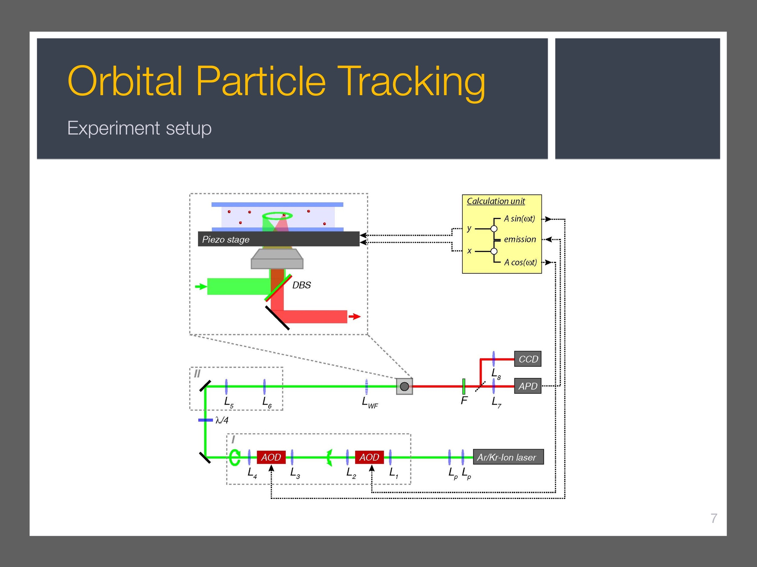 single-particle-tracking_presentation 8.jpeg