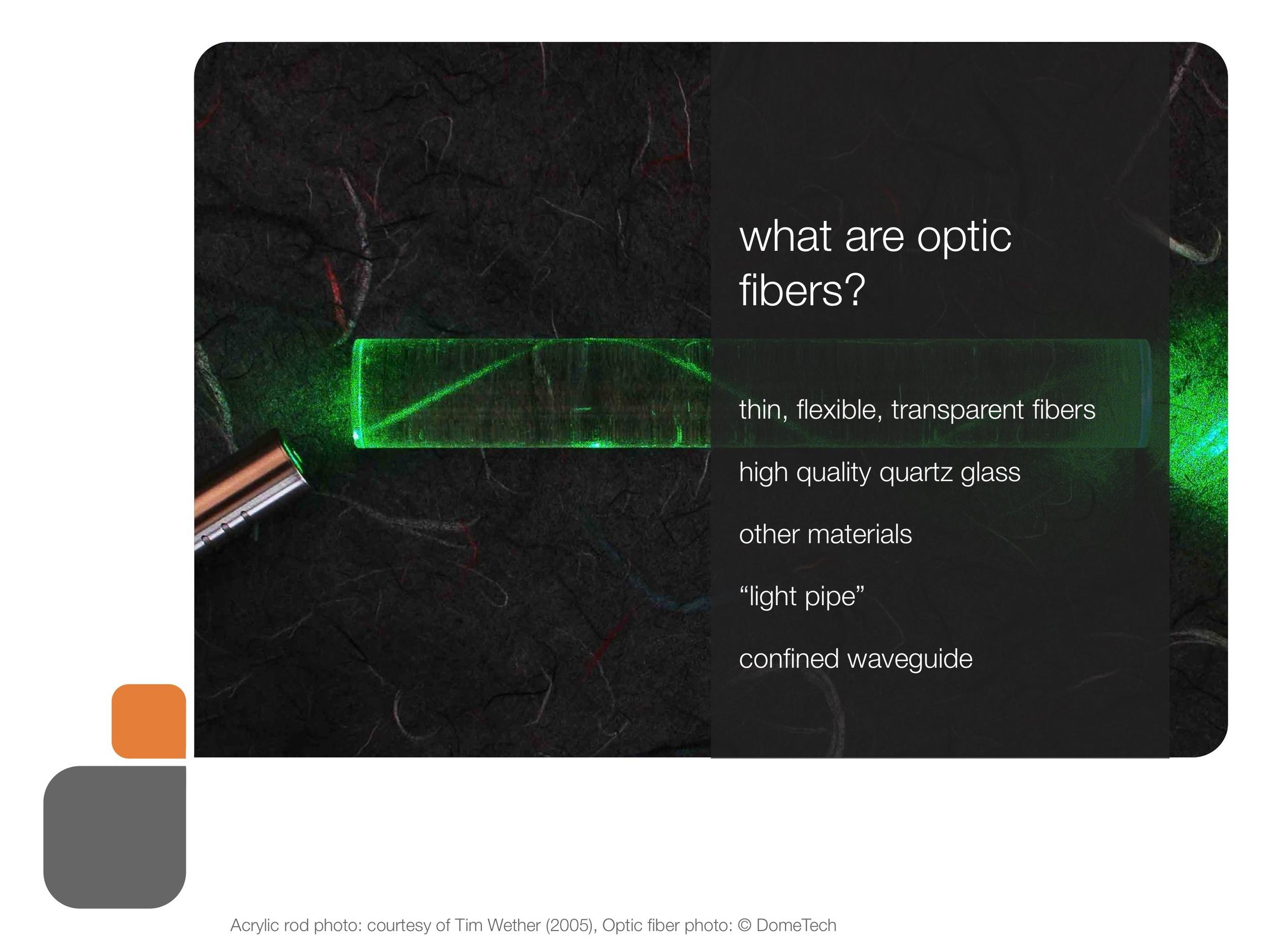 role_of_fiber_og_presentation 23.jpeg