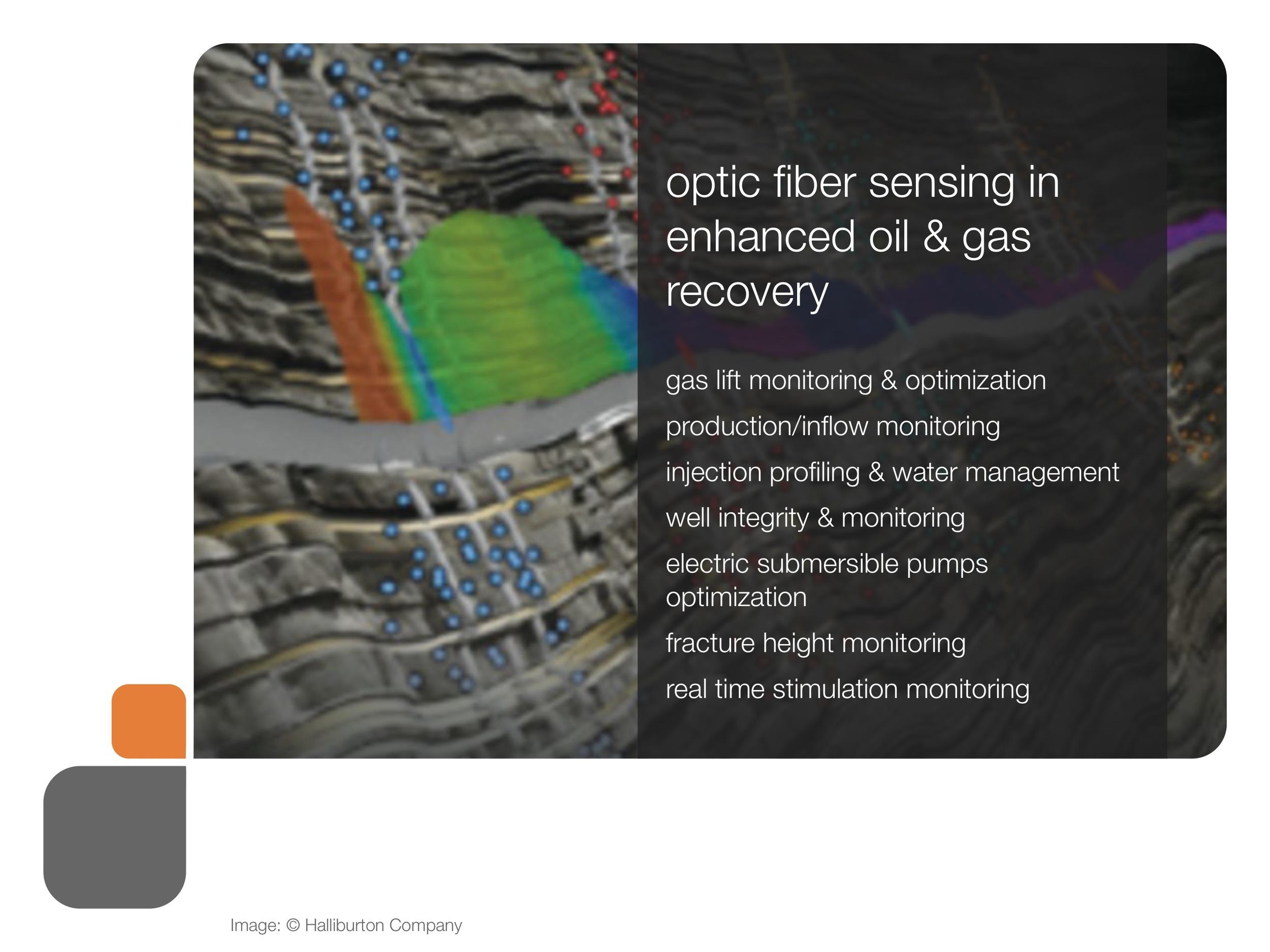 role_of_fiber_og_presentation 31.jpeg