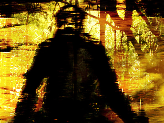 Loy's American Ape 05.jpg