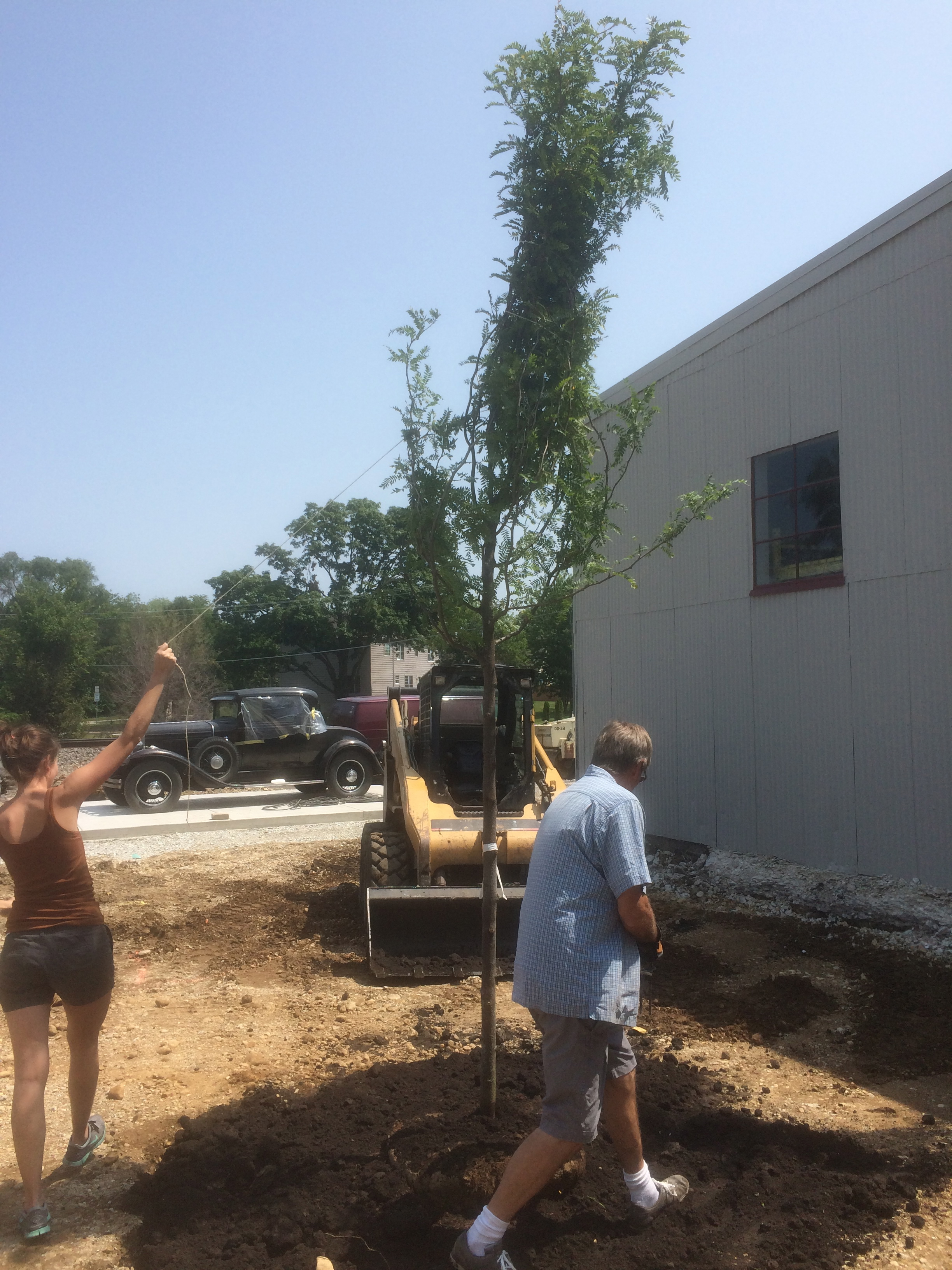 My dad, Clayton, and I planting the two trees in the courtyard, before the pavers were installed.