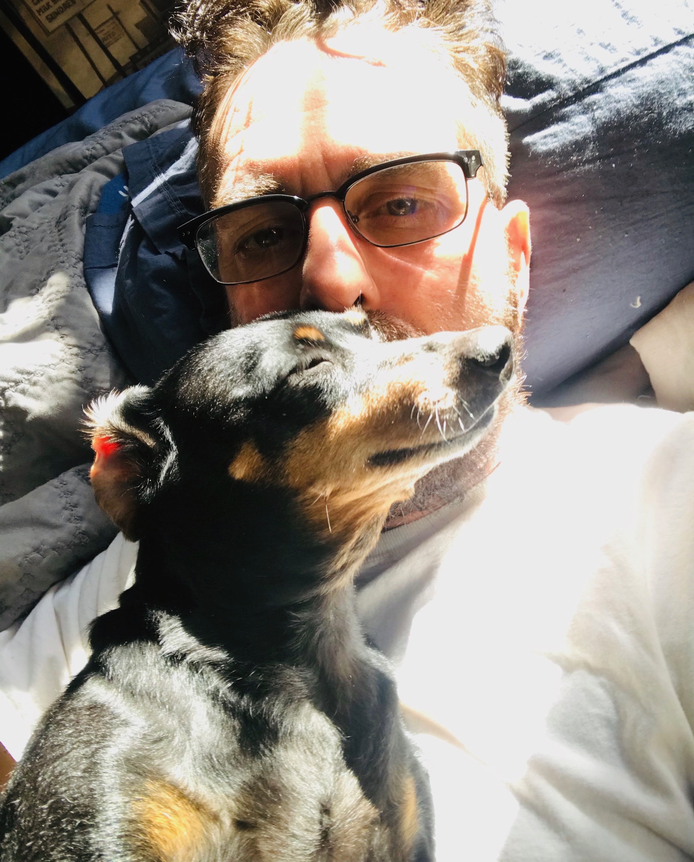 "We have many ""Soulmates"" in one lifetime and Yes animals can be soulmates and healers to us along the path of our journeys. Heres is one of my healers: Serena my 12 pound Dachshund. Who has brought me joy and taught me lessons in that healing comes in many forms.    I'am versed in Animal Medicine and Totems both Eastern and Western."