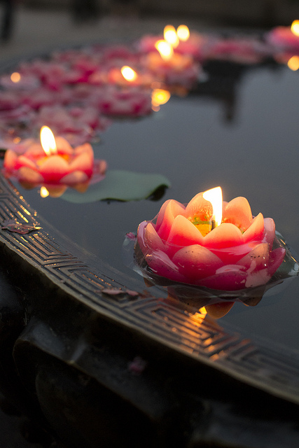 Zen garden #9.jpg