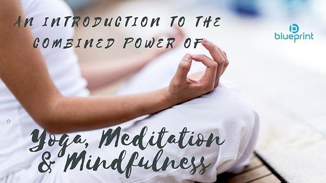 DONT MISS OUT! 💙 We are running a yoga and introduction to mindfulness course  at the studio on Sunday 9th and 16th September from 4pm to 6pm. The workshop will be approx 50/50 yoga and mindfulness. Nupur, the lady who operates at our therapy room will be running the mindfulness element and it's going to be amazing! If you are interested in mindfulness this would be a great intro to get your started.  The cost will be just £30 per person for the 2hour session and there will only be 15 places on each workshop. Please contact us via email (link above) or give us a call (number on our website) to sercure your space!  #flexfriday #yoga #mindfullness #mindful #meditation #changyourblueprint #fitfam #fitness #bodybuilding #healthylifestyle #transformation