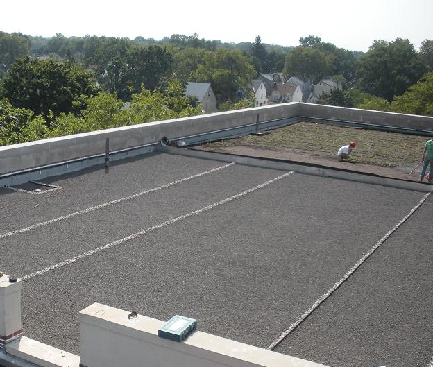 Green Roof - PS118 - Queens NY - Sample 2.JPG