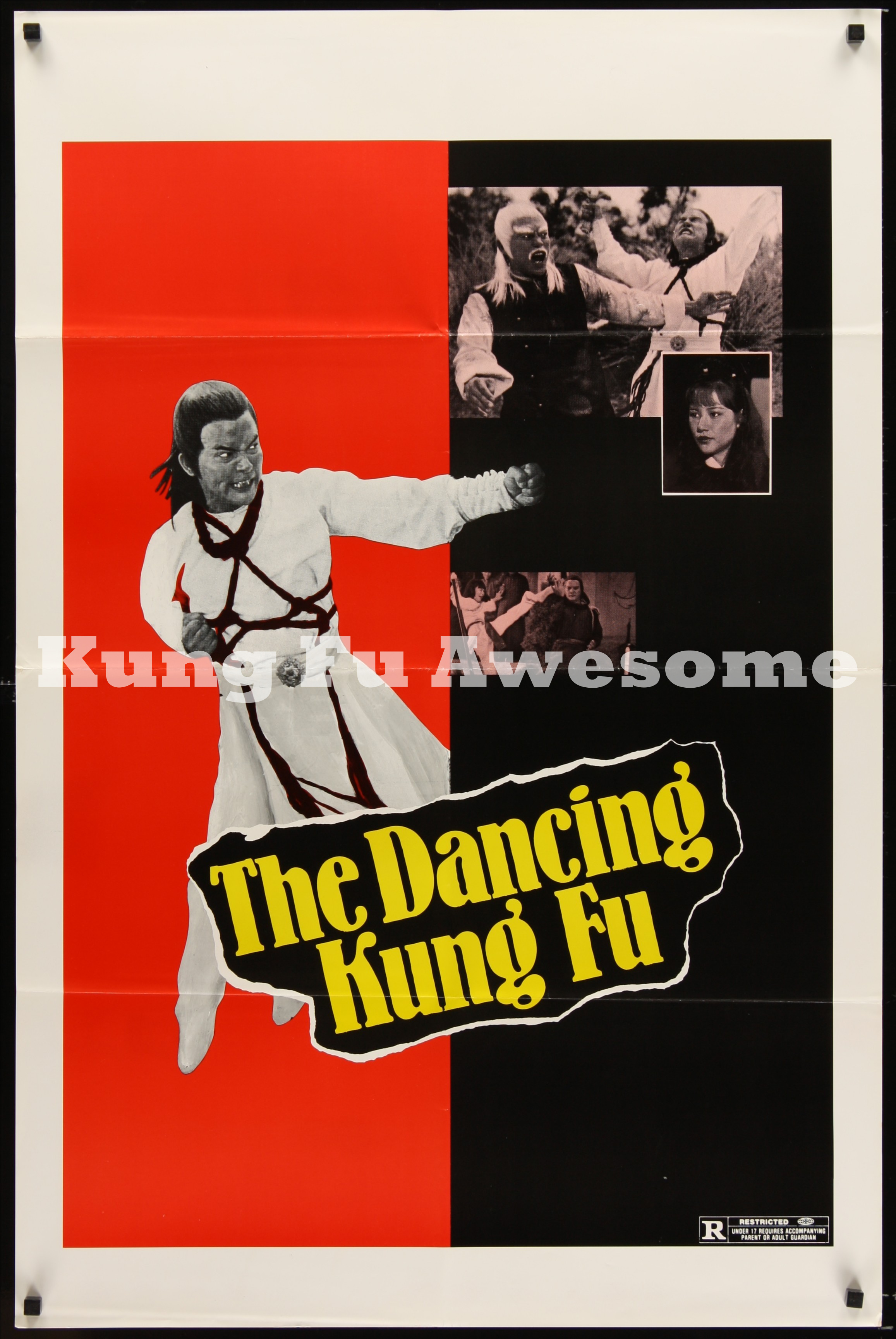 dancing_kung_fu_teaser_NZ03181_L.jpg