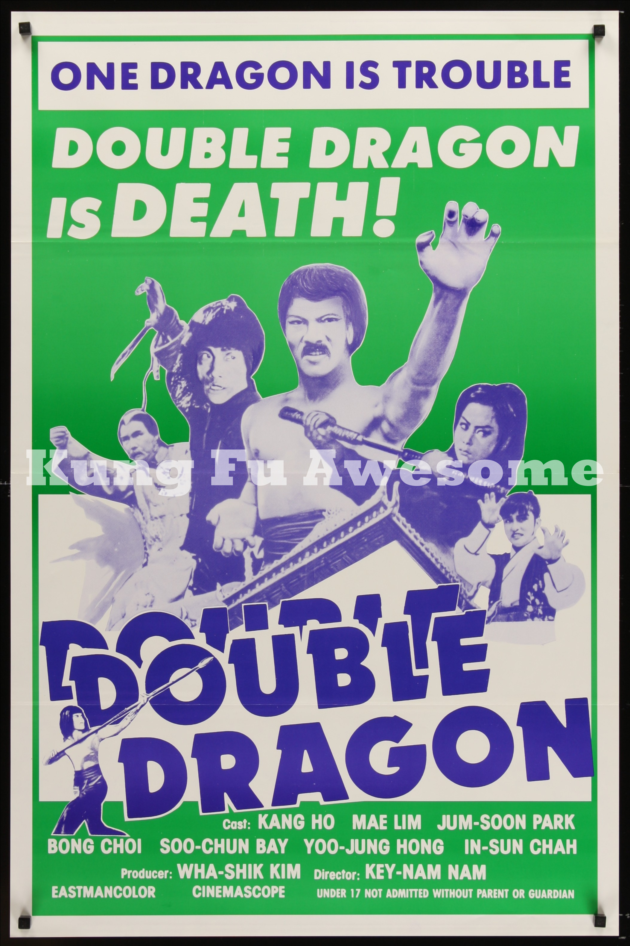 double_dragon_NZ03465_L.jpg