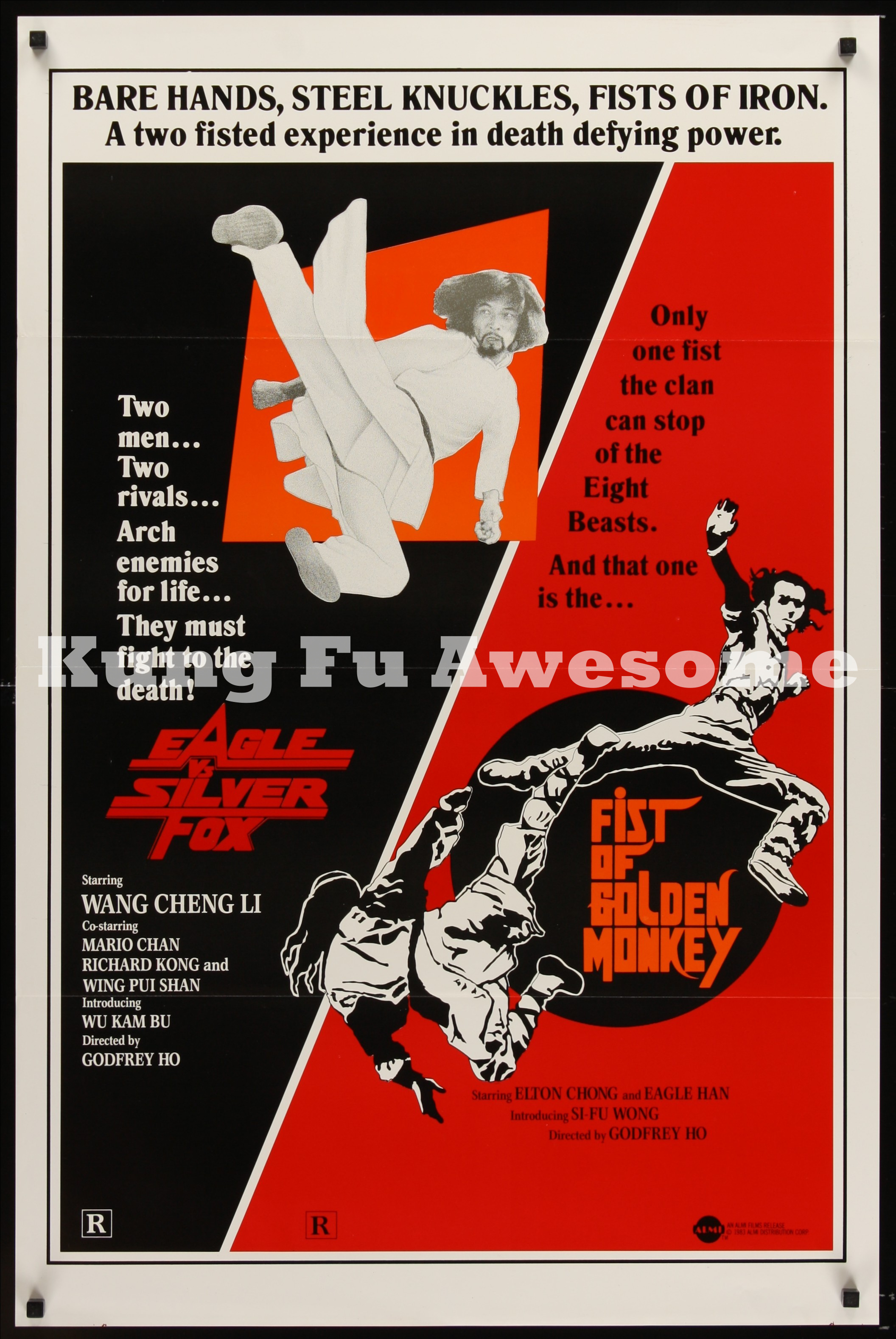 eagle_vs_silver_fox_and_fist_of_golden_monkey_NZ03465_L.jpg