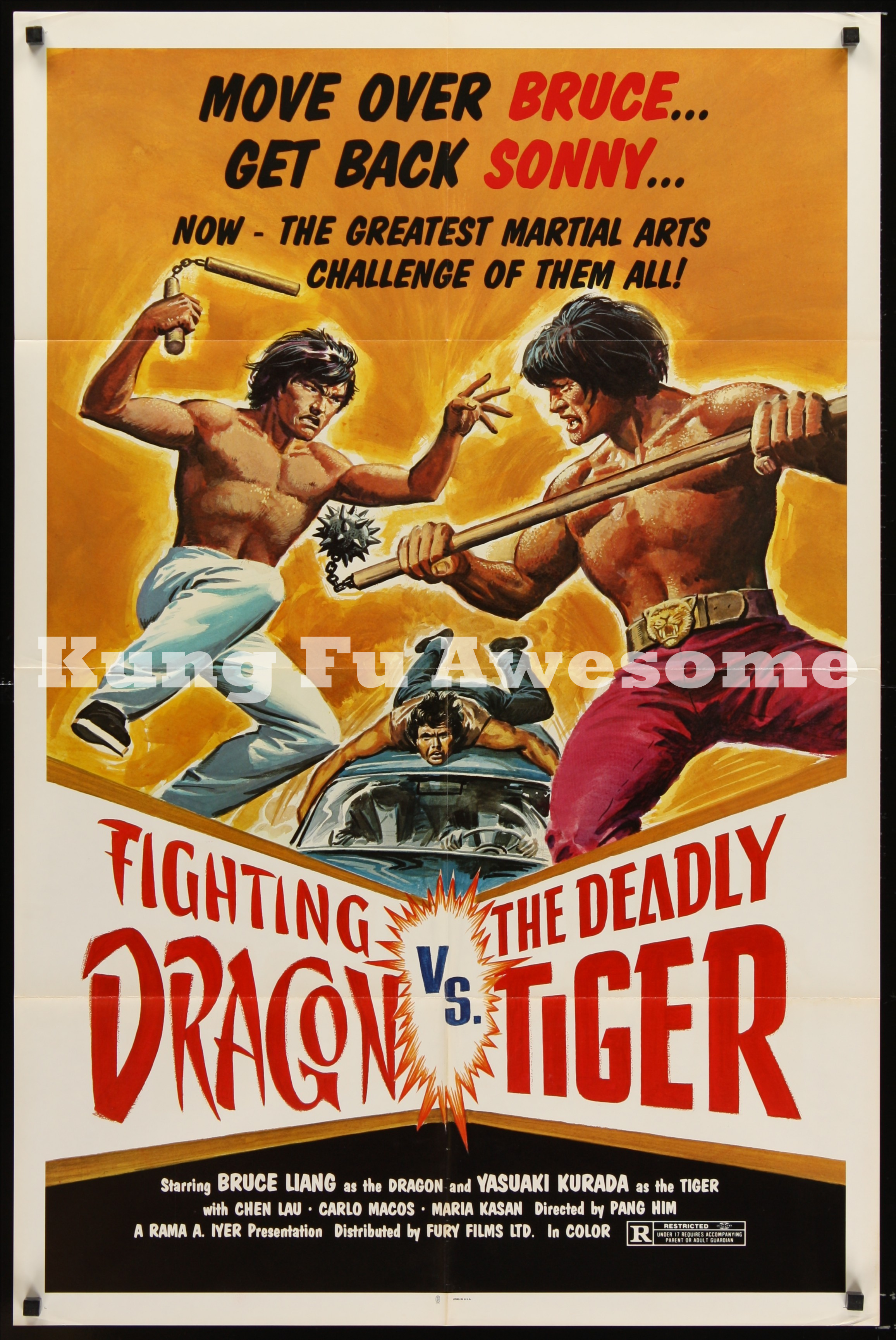 fighting_dragon_vs_the_deadly_tiger_NZ03157_L.jpg