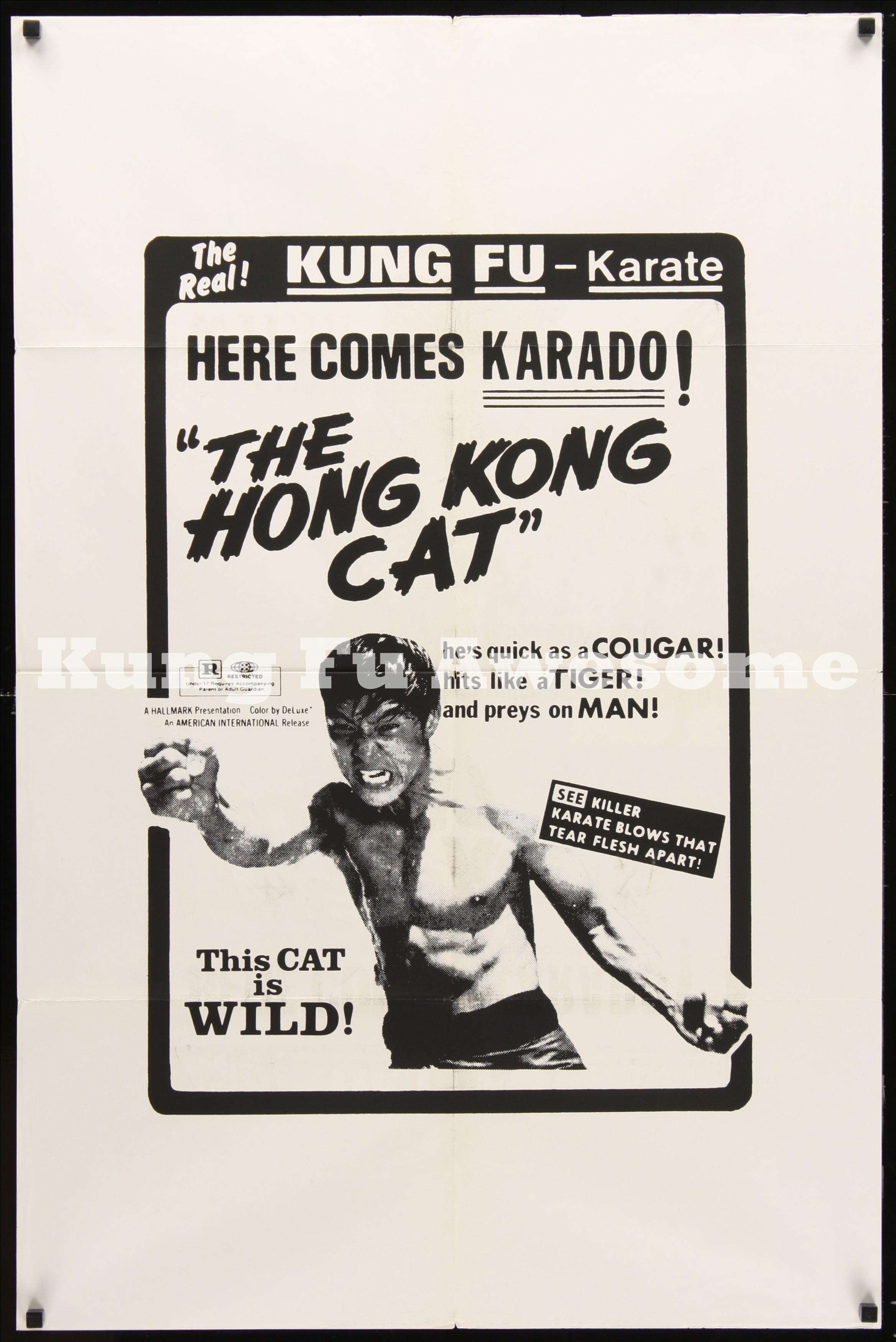 hong_kong_cat_dupe2_MF00256_L.jpg