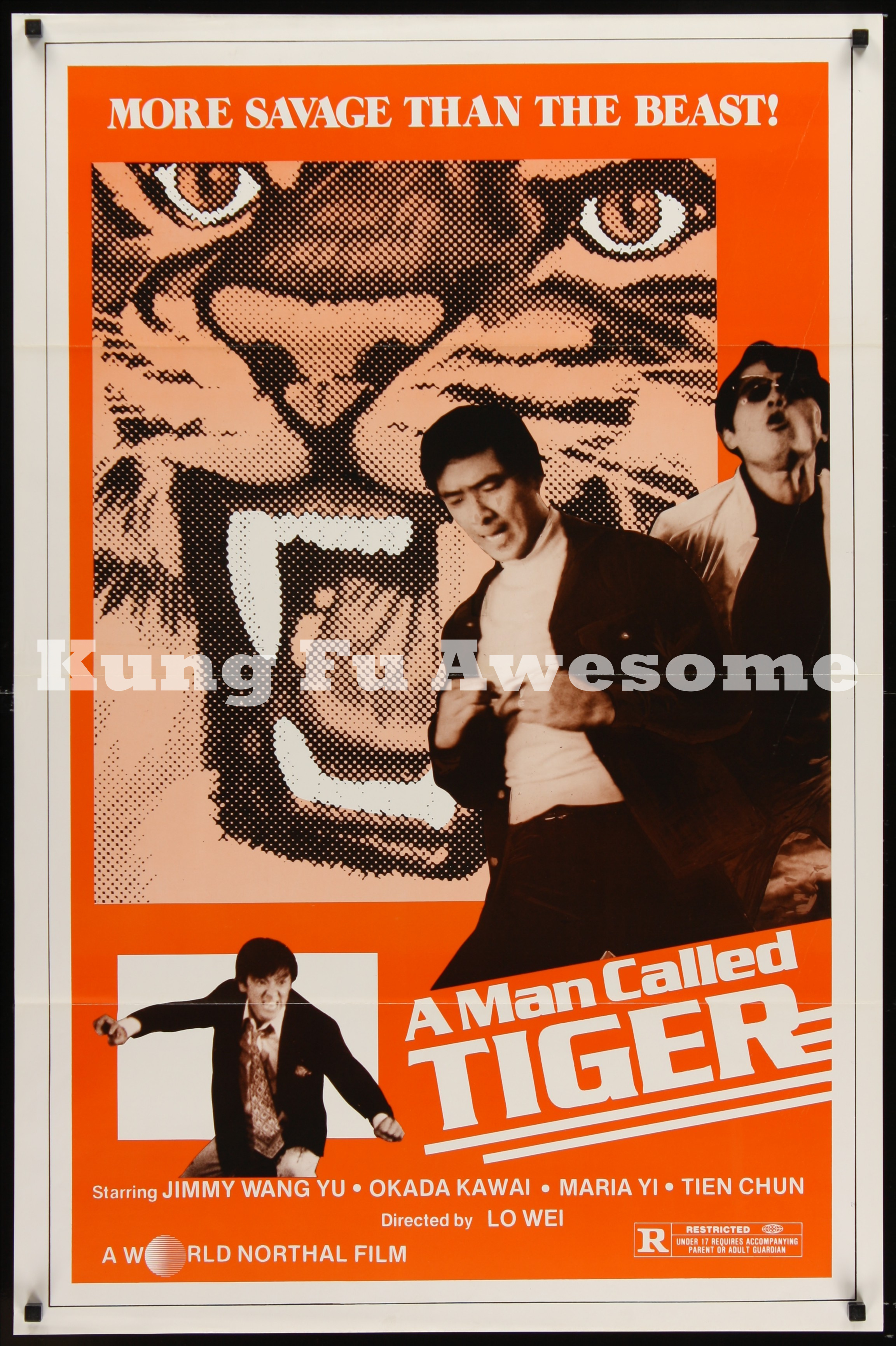 man_called_tiger_NZ03772_L.jpg