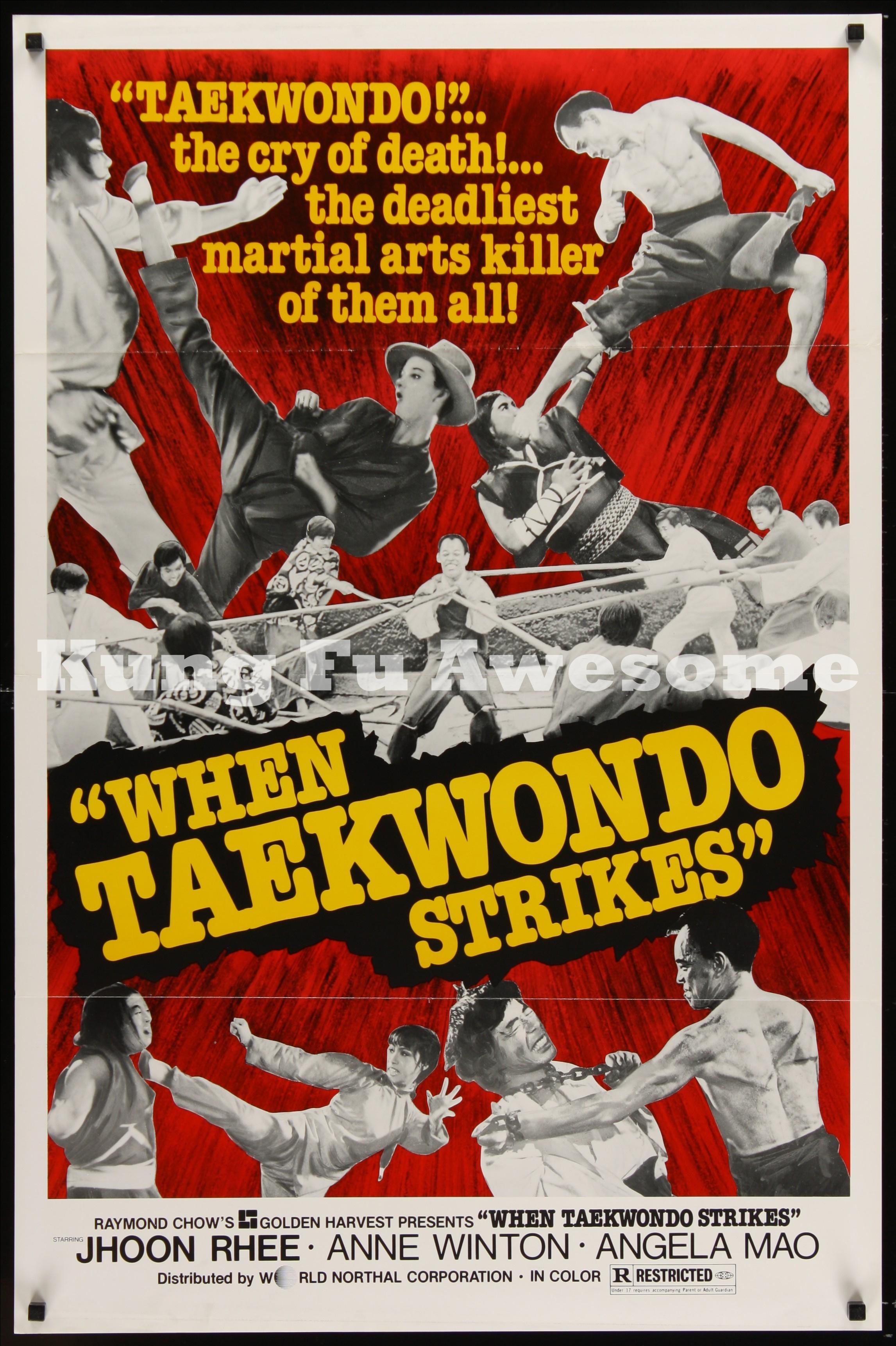 when_taekwondo_strikes_NZ03751_L.jpg