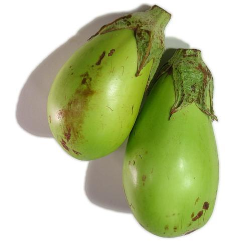 Green eggplants.