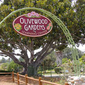 Olivewood Gardens