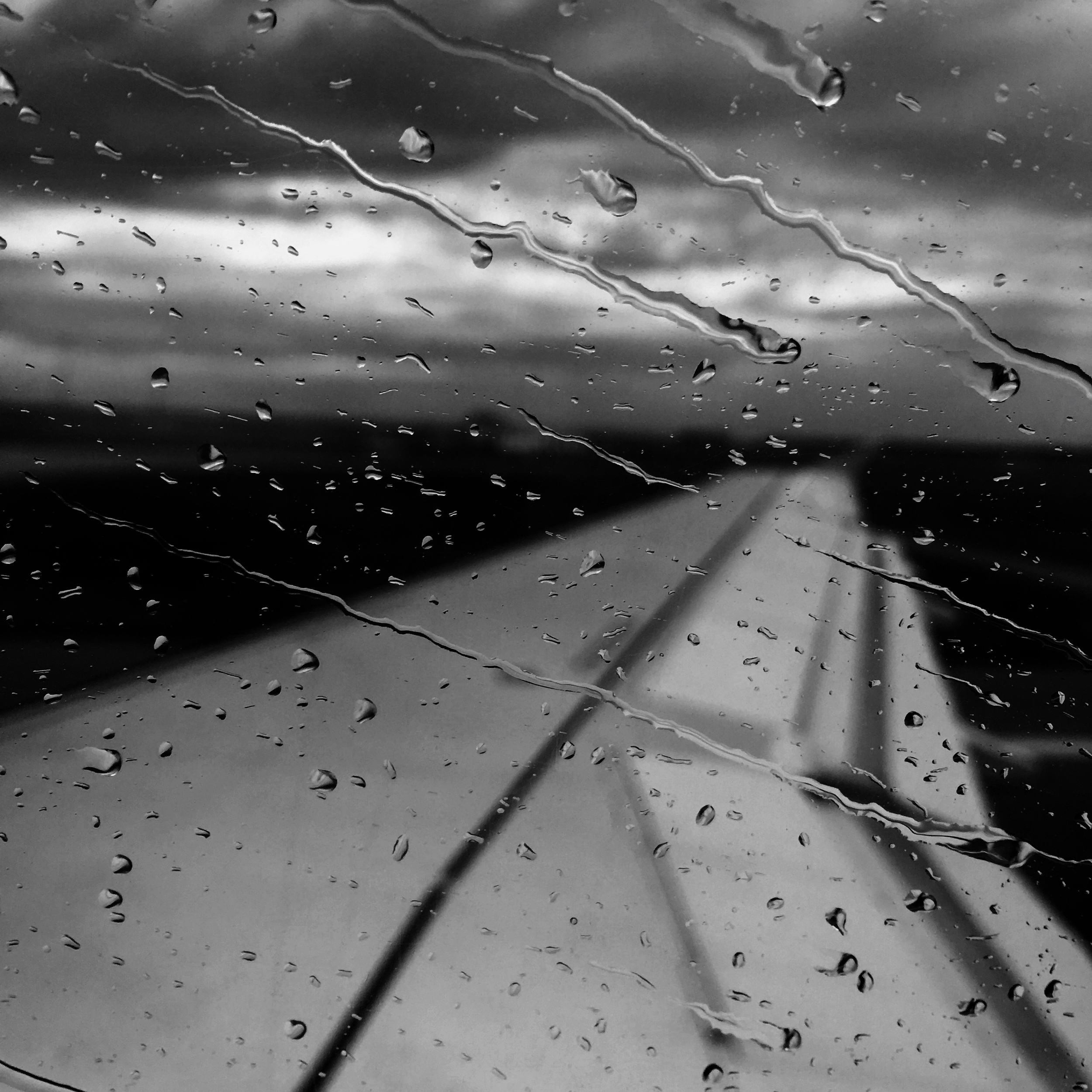 Fly away on a rainy day