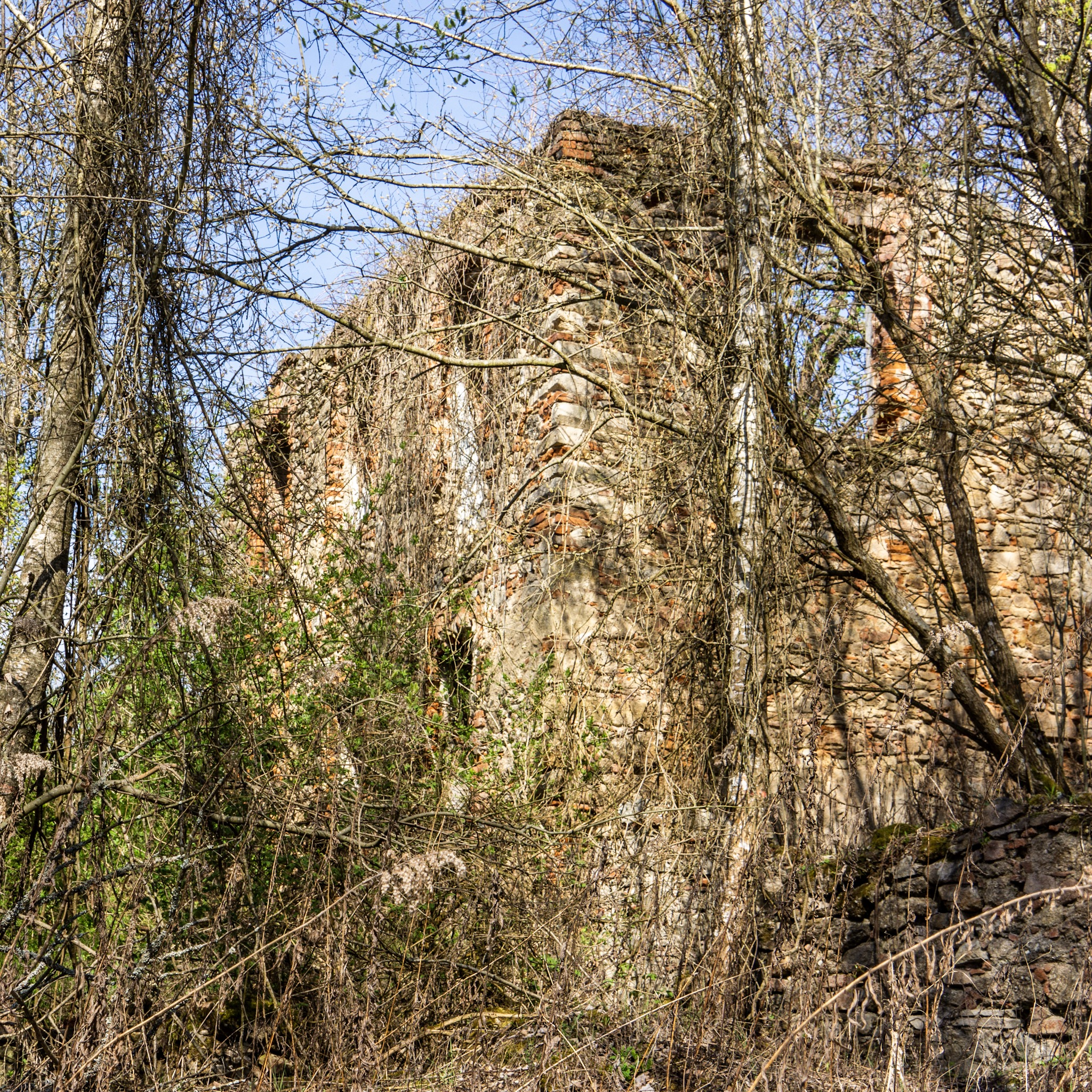 More abandoned structured in the woods at Döllersheim