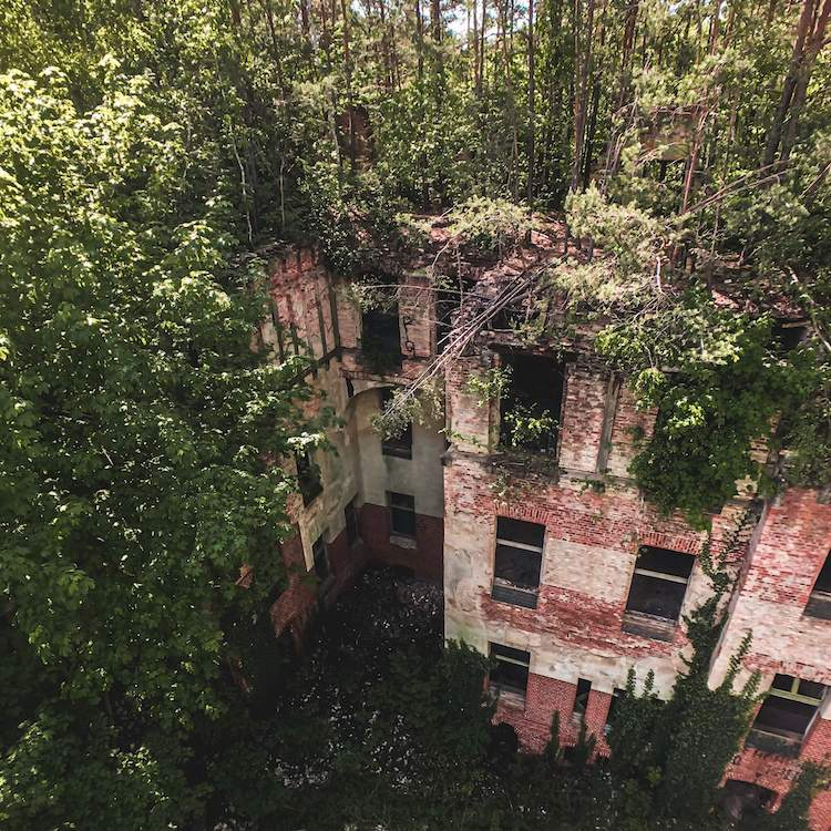 View of the abandoned building and rooftop forest