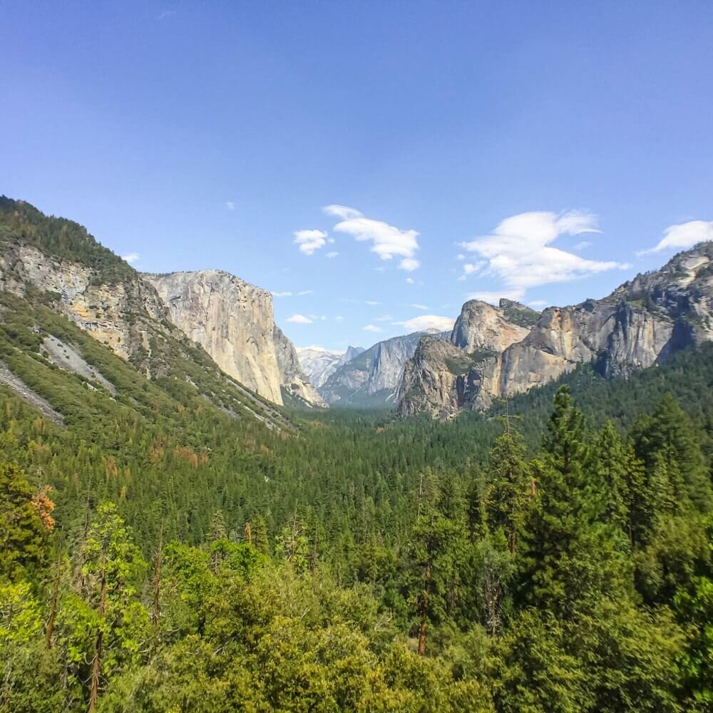 Tunnel view with Moment wide anglelens.