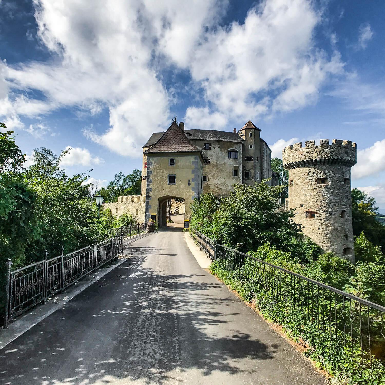 Castle Ruin Plankenstein
