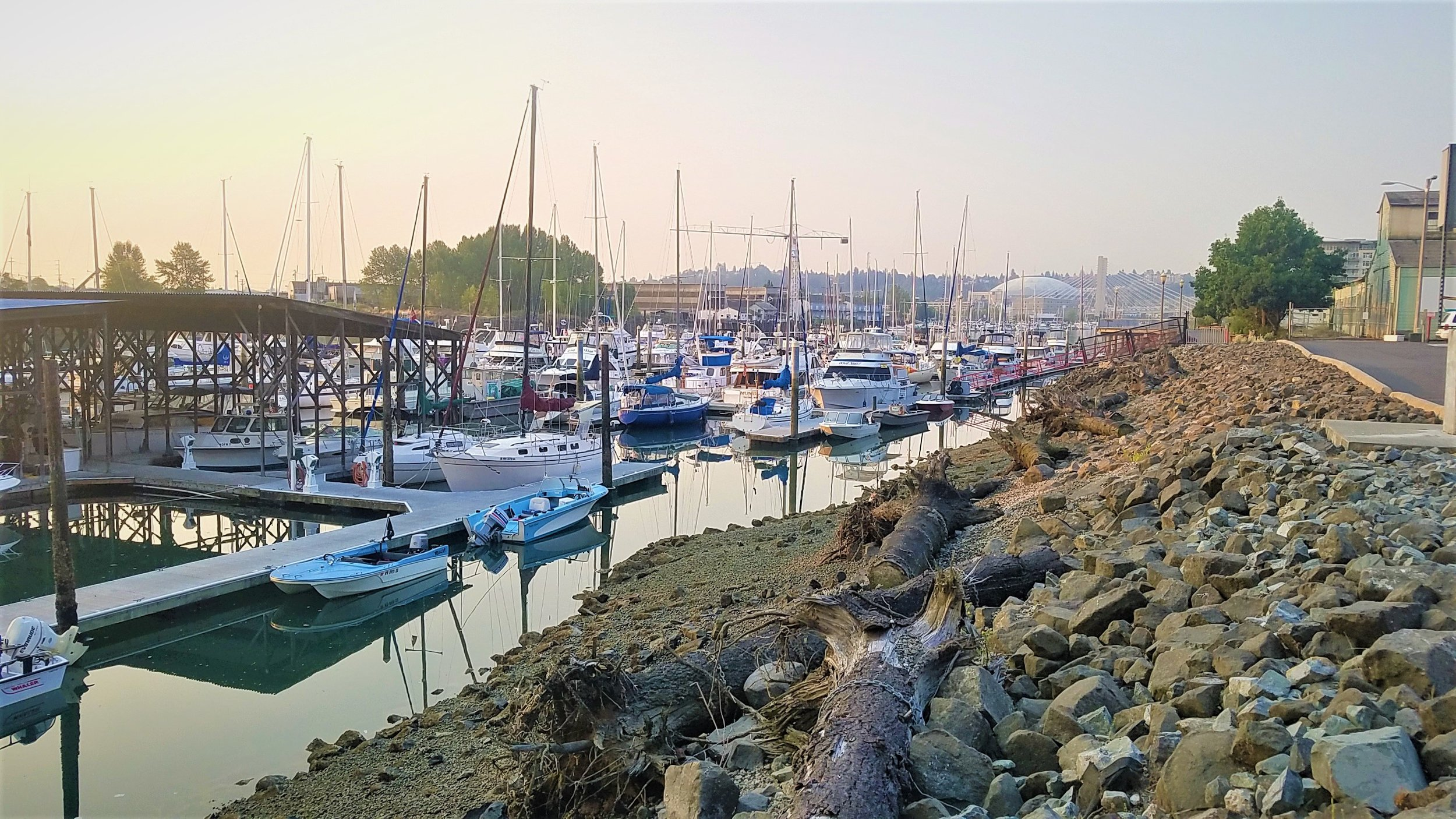 Boatyard.jpg
