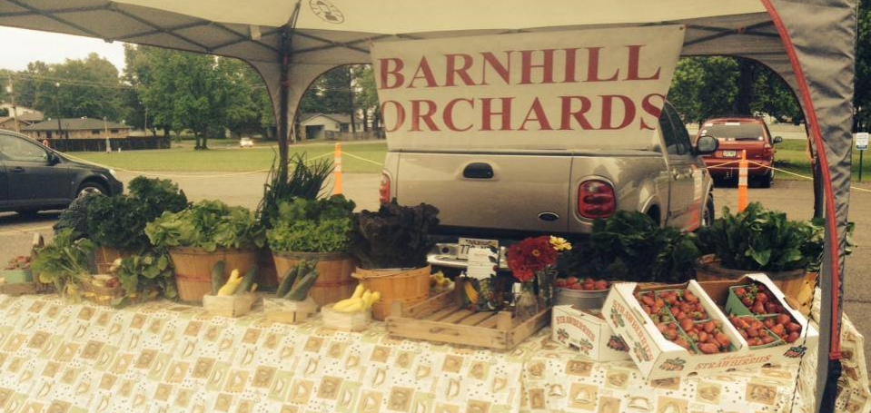 The Root receives weekly deliveries from Barnhill Orchard which include beautiful fruits and veggiesand free-range, golden-yolk eggs!