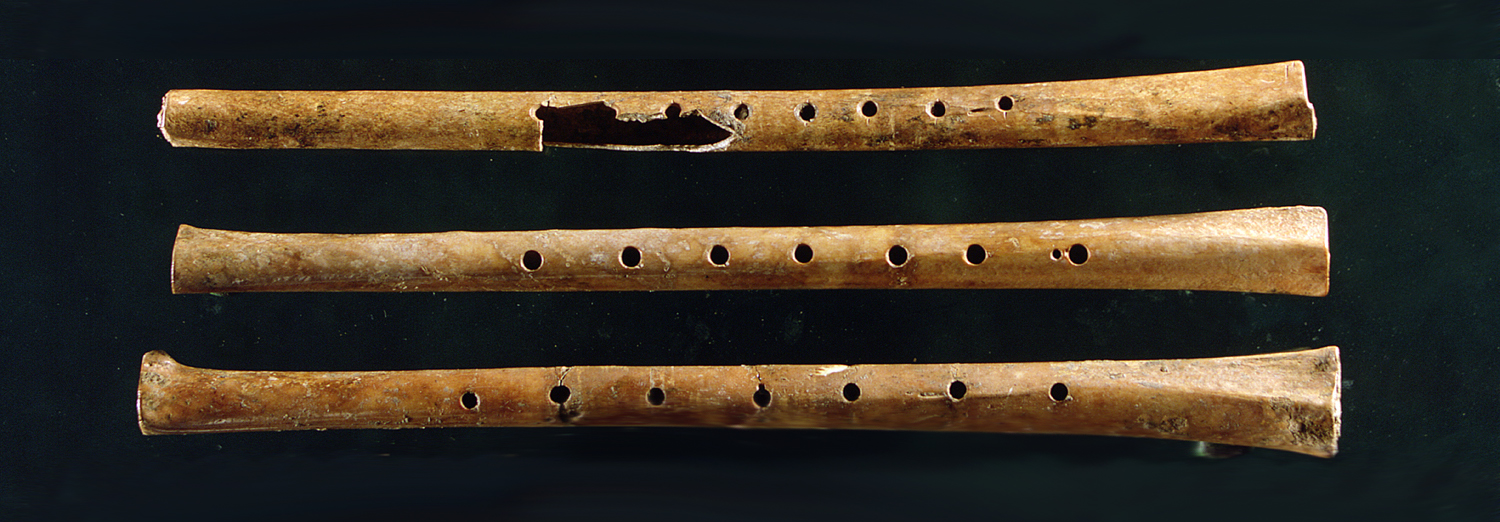 Bone flutes from a 9000 year old site in China