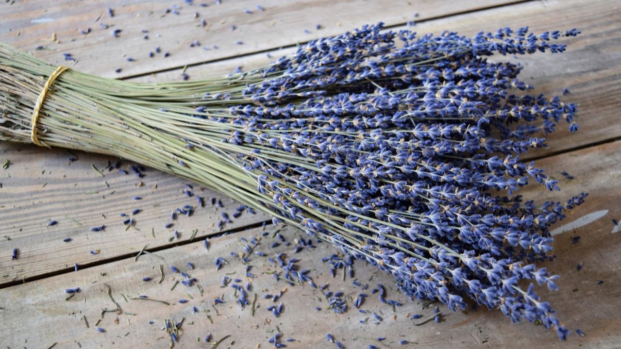 MF004AdditionalImage-Mills-Floral-XL.jpg