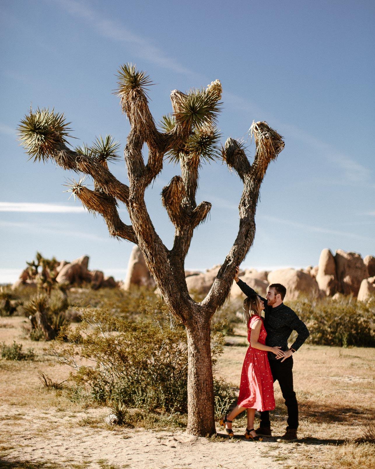 Joshua_Tree_Engagement_Wedding_Elopement_Photogapher_27.jpg