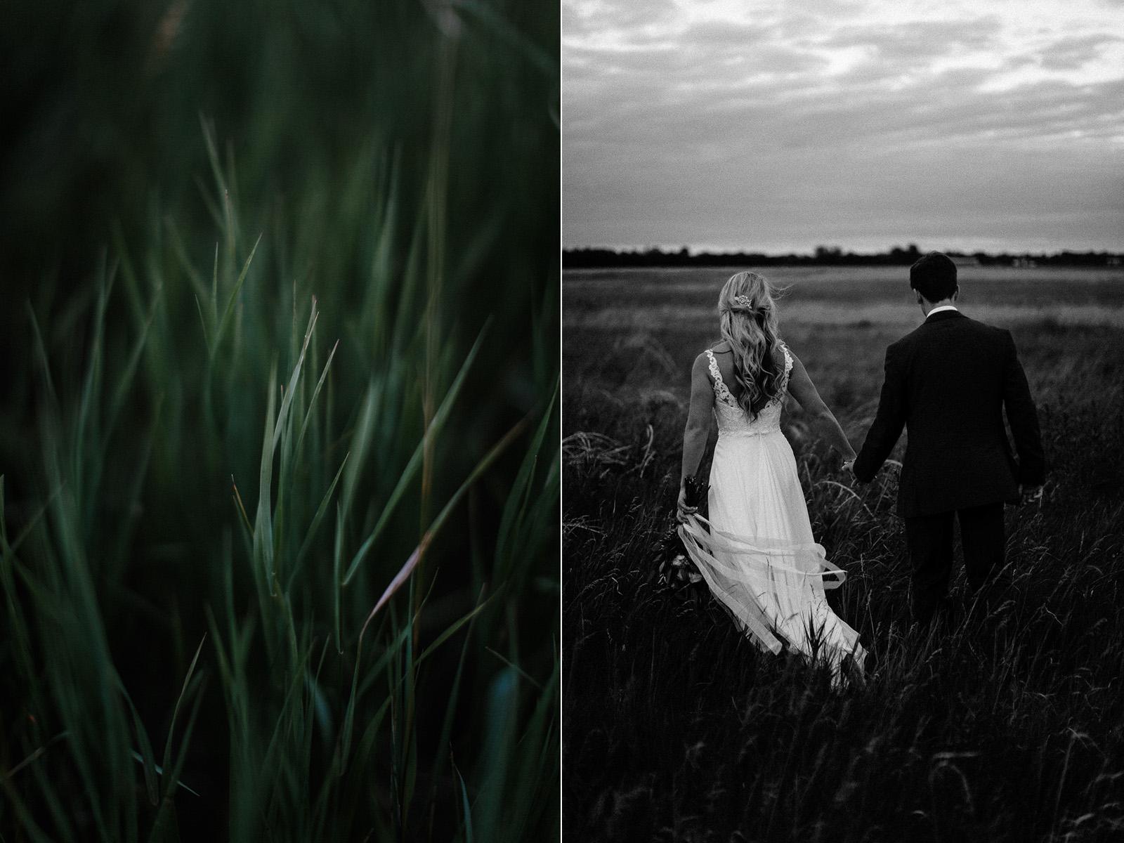 Intimate_Farmhouse_SD_Wedding_Bridgette_Philip_064.jpg