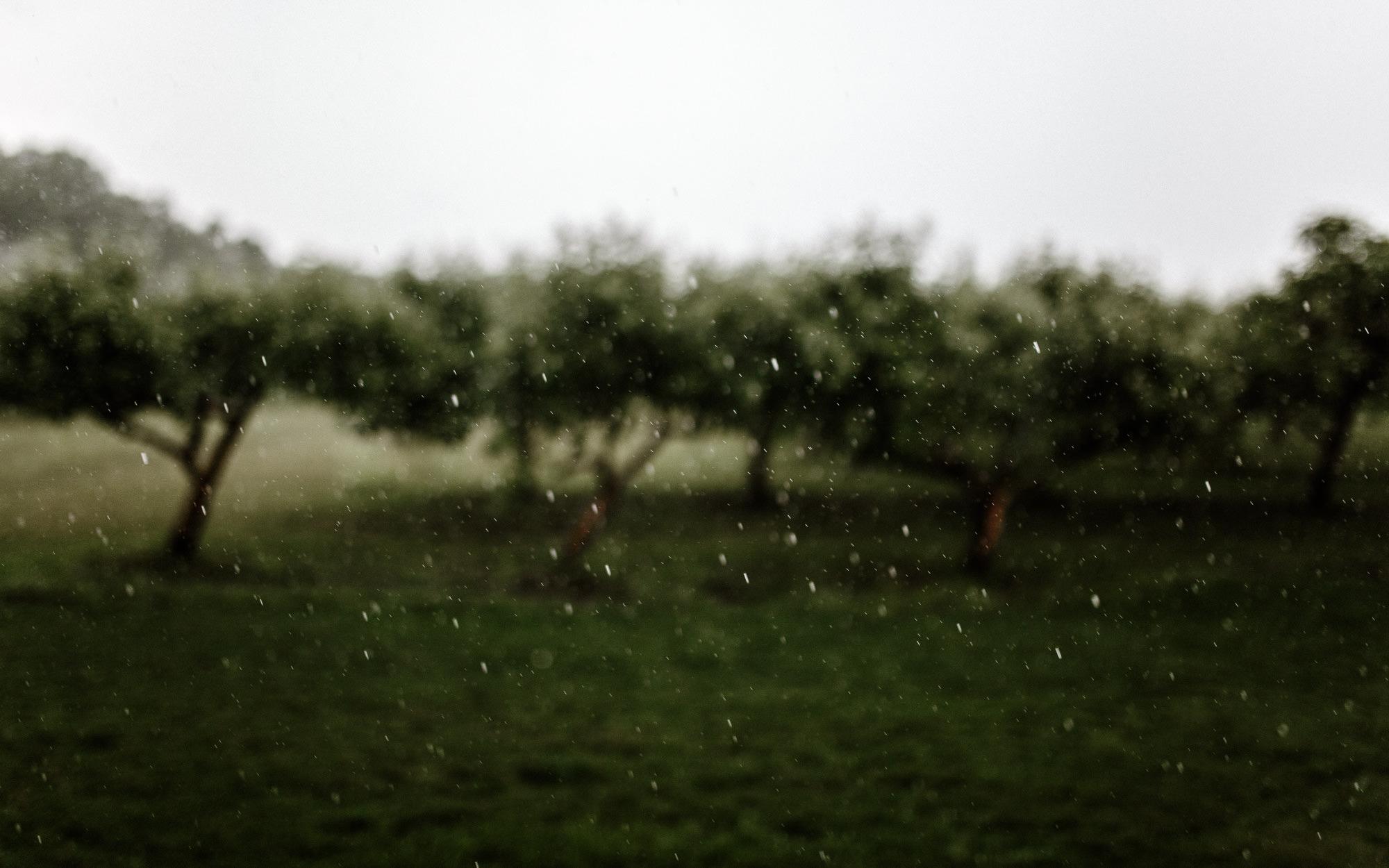 meadow-barn-wedding-sioux-falls-south-dakota-romantic-adventerous-michael-liedtke-photography065.jpg
