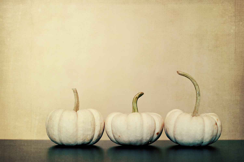 nelougrace_three_little_pumpkins.jpg