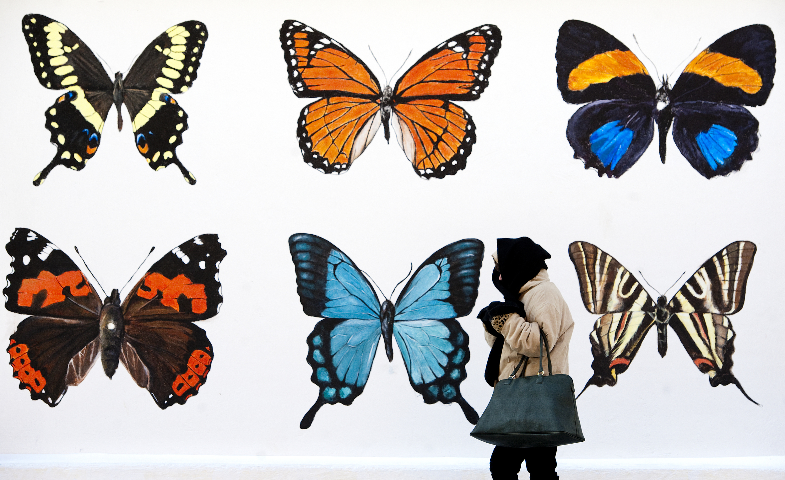 Deb Tatarka of Greensburg grasps her scarf as she walks past a butterfly mural while temperatures hover in the teens along Pennsylvania Avenue in Greensburg on Jan. 8, 2015.