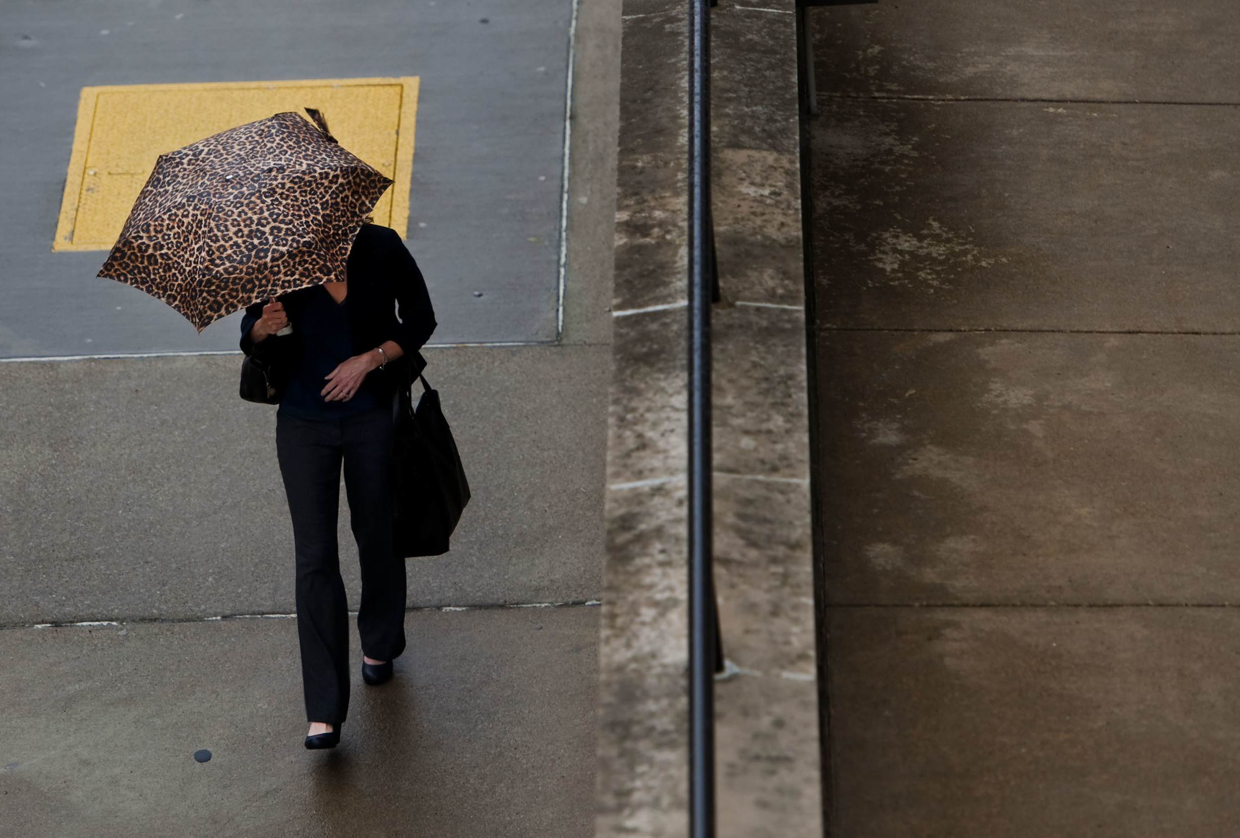 A pedestrian shields herself from the rain with an animal print umbrella on Thursday, March 10, 2016 along Otterman Street in Greensburg.