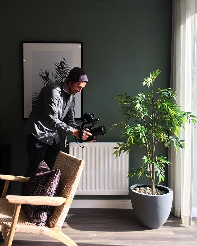 @benjamin_hay everybody - cinematographer, film maker, content creator, guy that films pot plants.  #sonyfs5 #atomosshinobi #filmmaking #cinematography #desperatetimes