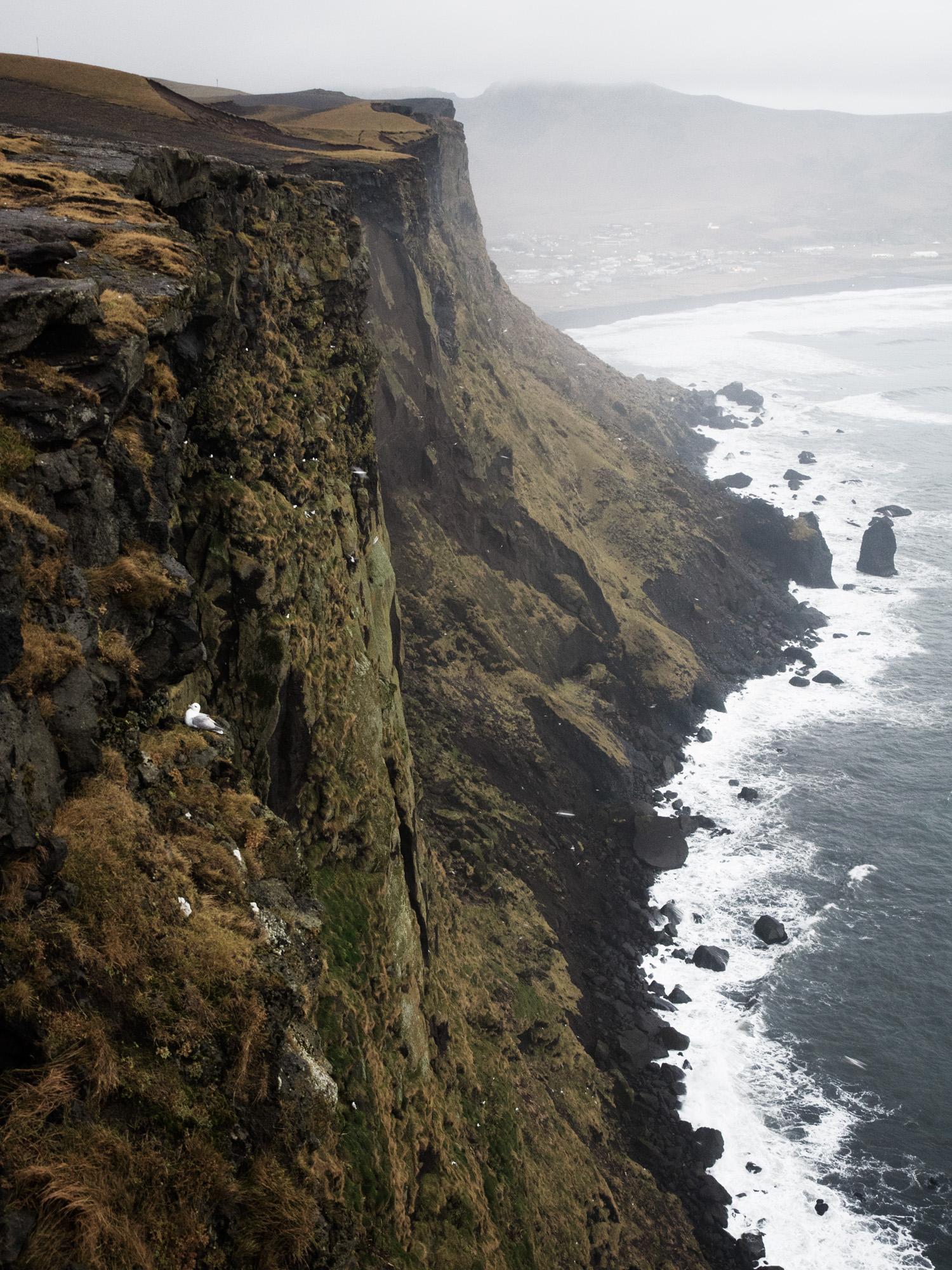 Iceland_olympus20141023_ARA_2.jpg