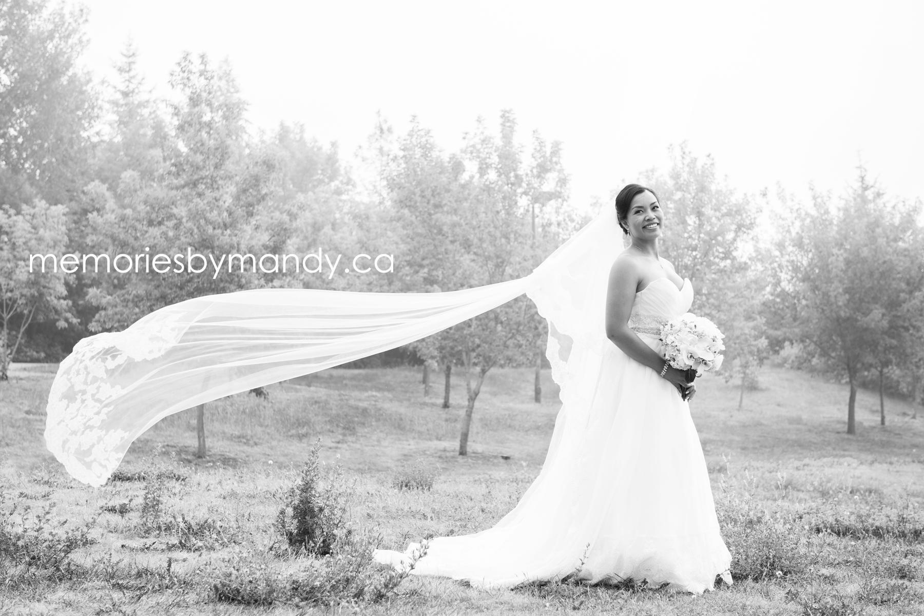 Saskatoon wedding photographer (71).jpg