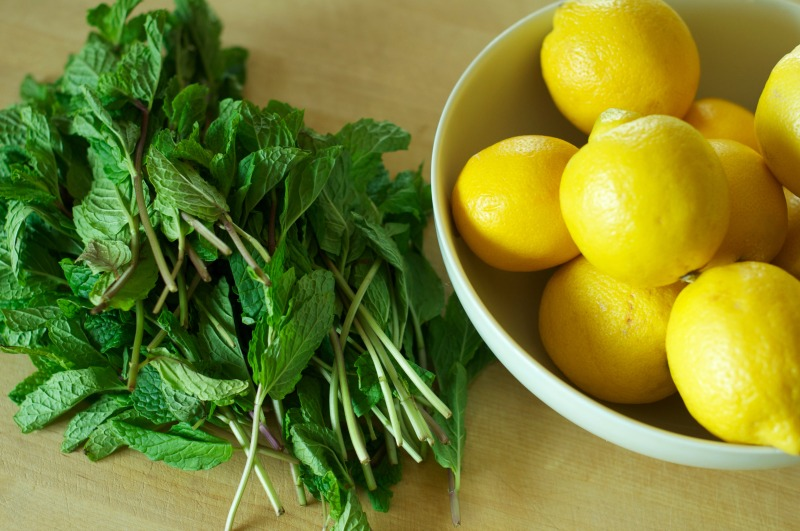 Lemon Nana @savourysoulwellness