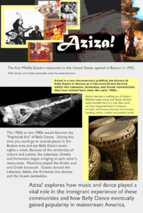 Aziza webpage for real.jpg