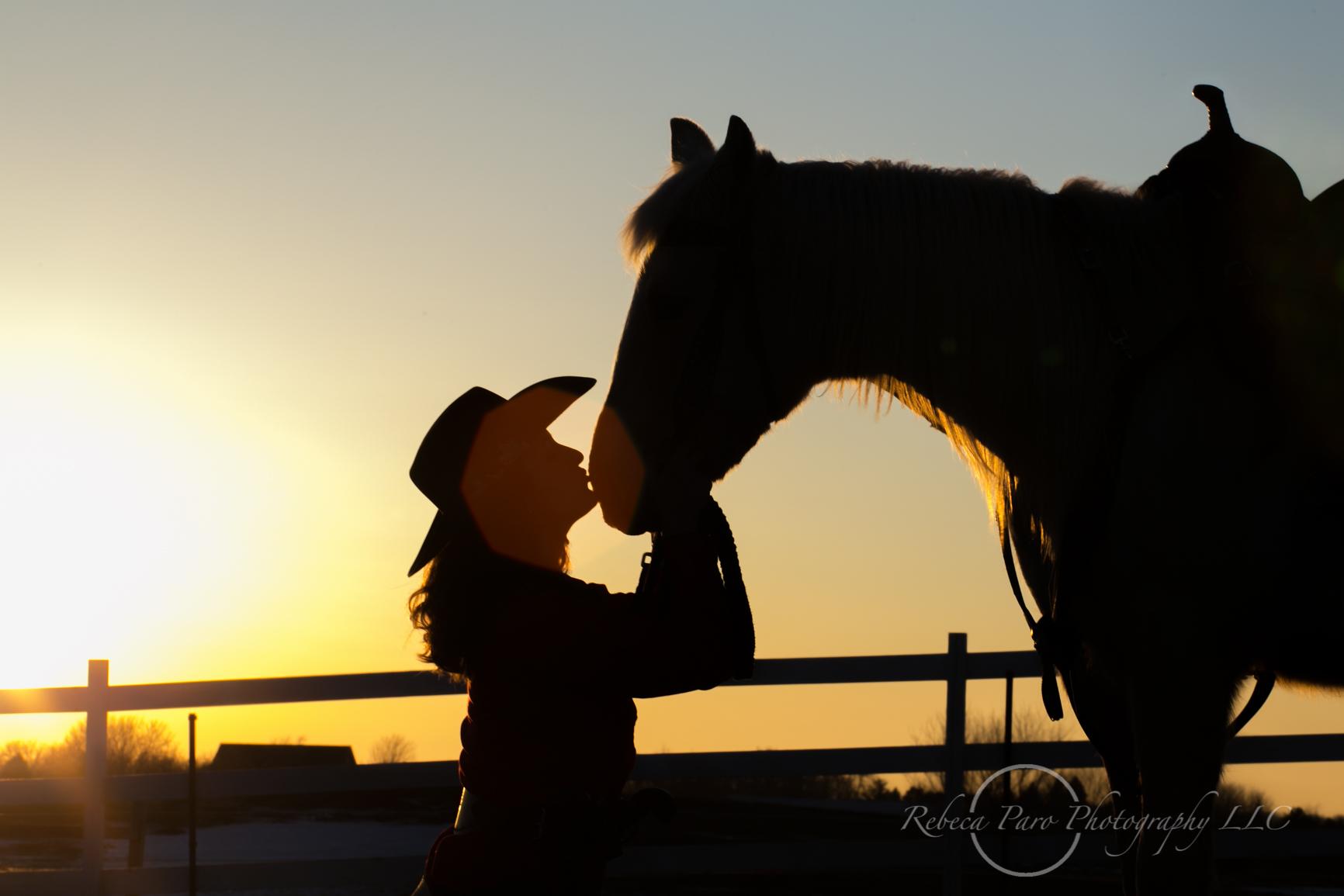 horse photography equine Minnesota photographer sunset silhouette